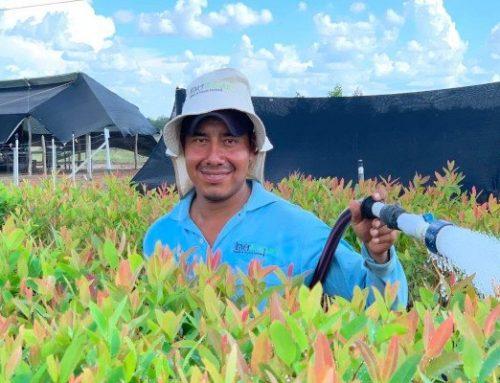 Naši kolumbijští partneři: společnost InverBosques (Kolumbie)